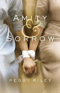 Amity and Sorrow paperback