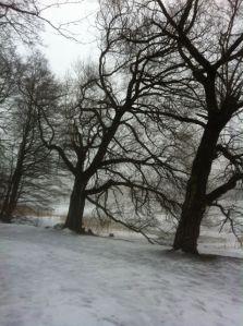 Helsinki Snow 1
