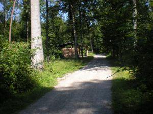 Waldhutte